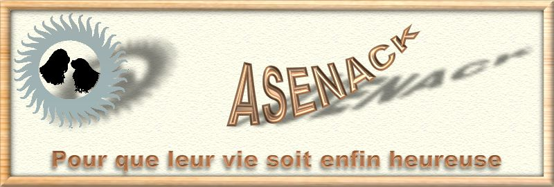 Link to l'Asenack